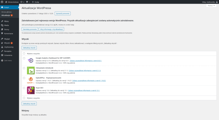 Widok panelu administracyjnego WordPress z listą wtyczek wymagających aktualizacji